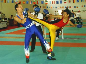 boxe-savate