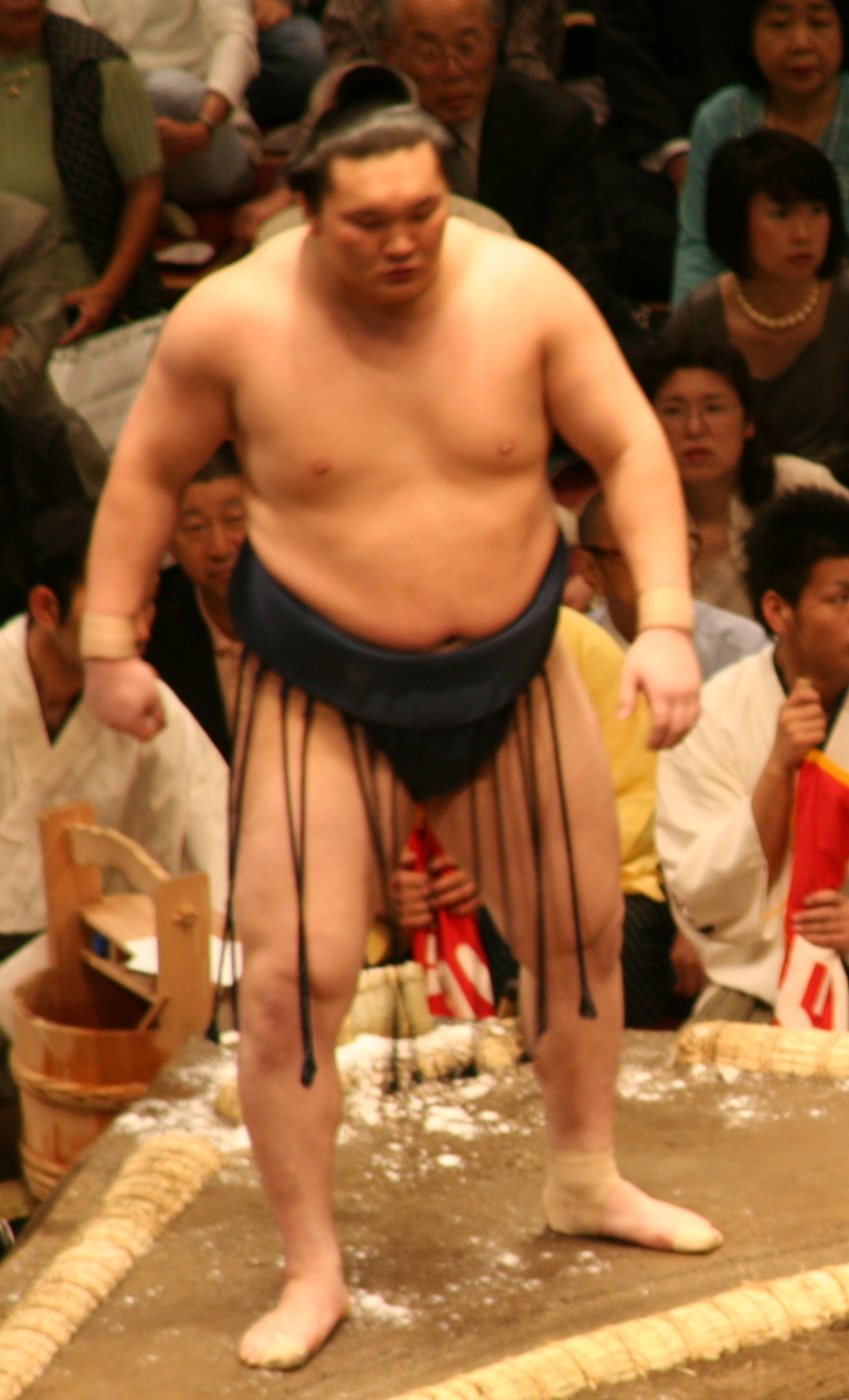 champion-sumo