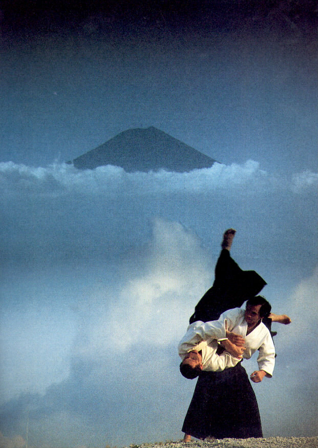 combat-aikido