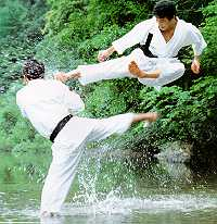 karate-japonais