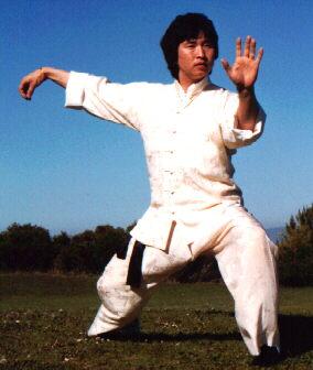 kung-fu-dragon