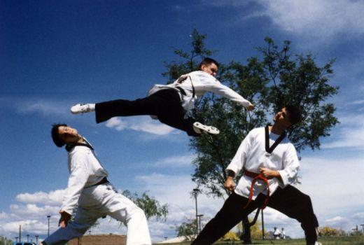 taekwondo-élite